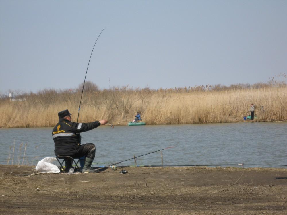 рыбалка на кубани река протока